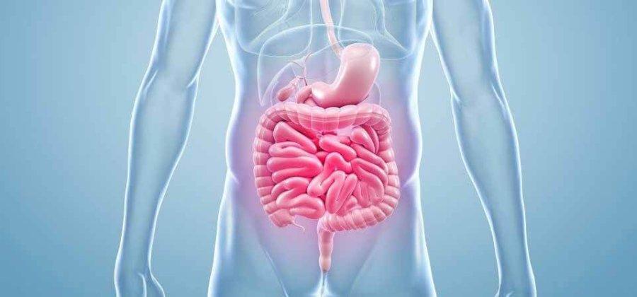 Мезентериальный тромбоз: причины, симптомы, лечение