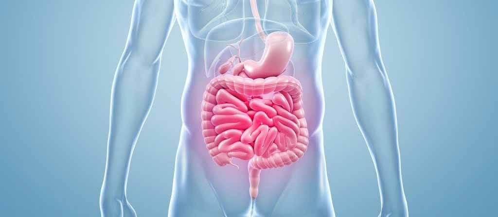 Эмболия и тромбоз брюшной аорты