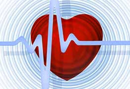укрепление сердечно сосудистой системы