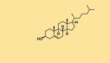 Холестерин: виды холестерина, их польза и вред для организма