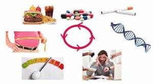 высокий холестерин причины